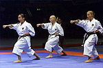 martial arts videos: karate