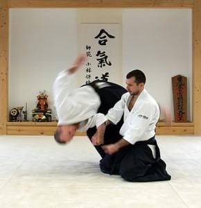 aikido tecniques