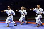 martial arts videos: karate